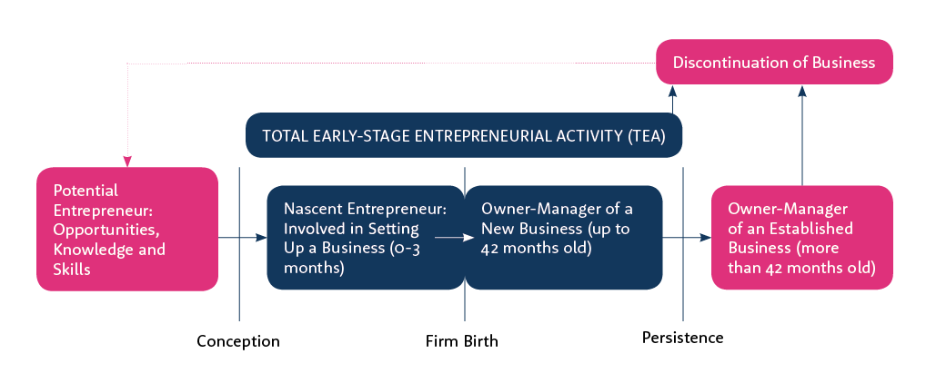 The GEM model of entrepreneurship